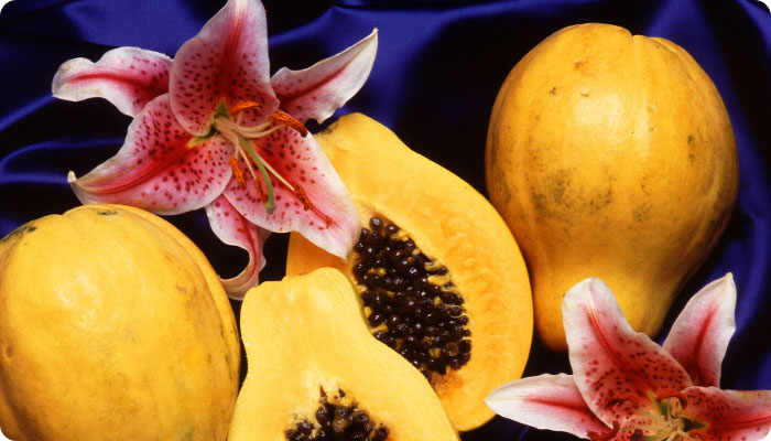 /images/Carica_papaya.jpg